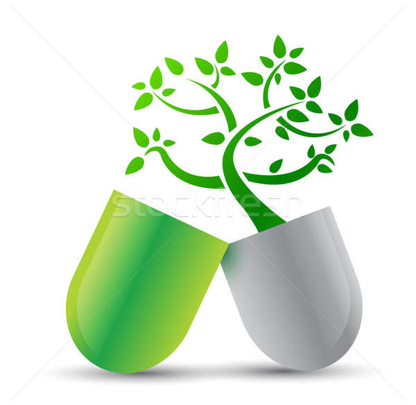 pill with nature ingredients illustration design over white Stock photo © alexmillos