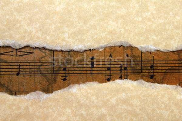 Müzik notalar levha dizayn arka plan imzalamak Stok fotoğraf © alexskopje