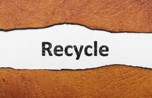 Stockfoto: Recycleren · tekst · gescheurd · papier · aarde · vel · gesneden
