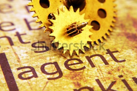 Old gear on home text concept Stock photo © alexskopje