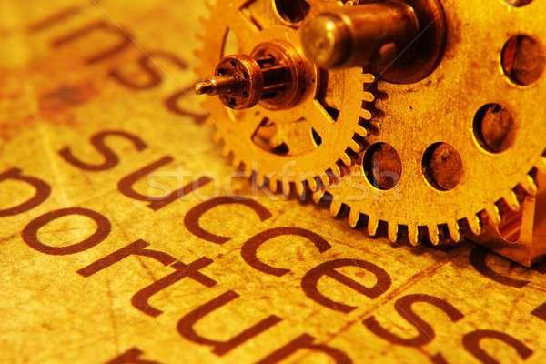 Success and gears concept Stock photo © alexskopje