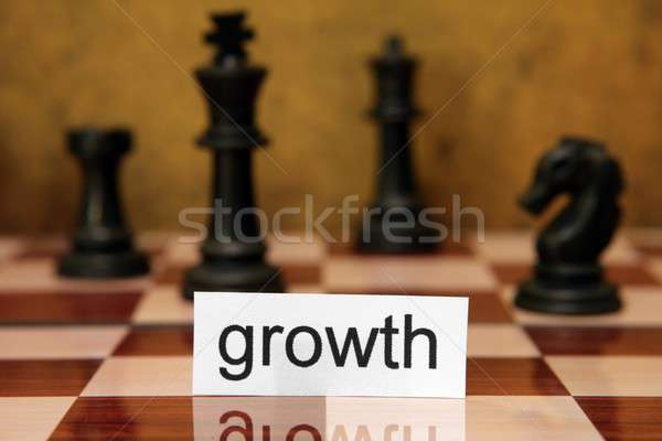 Growth concept Stock photo © alexskopje