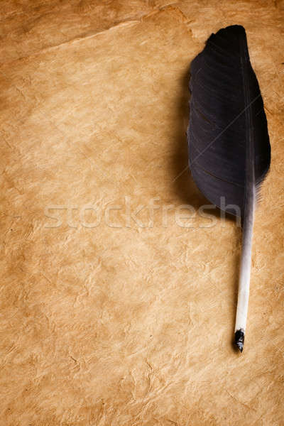 Quill pen Stock photo © Alexstar