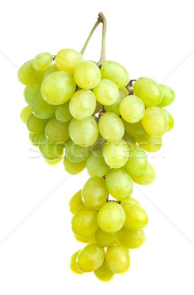 Szőlő izolált fehér farm szőlő diéta Stock fotó © Alexstar