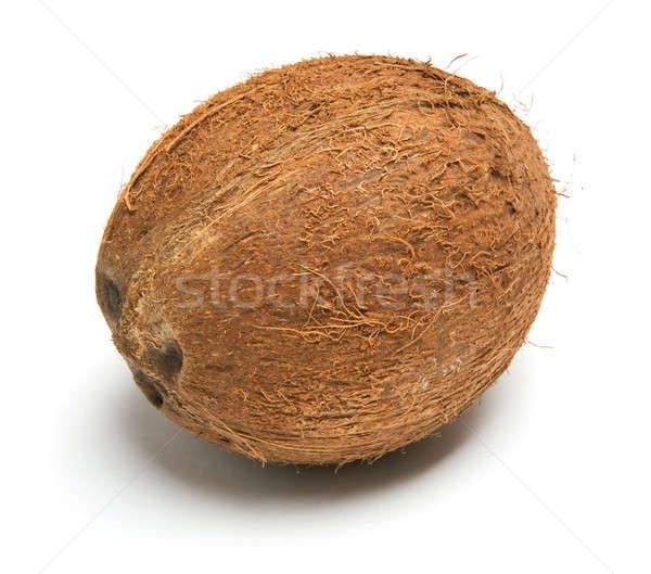 Coco comida natureza vida branco cultura Foto stock © Alexstar