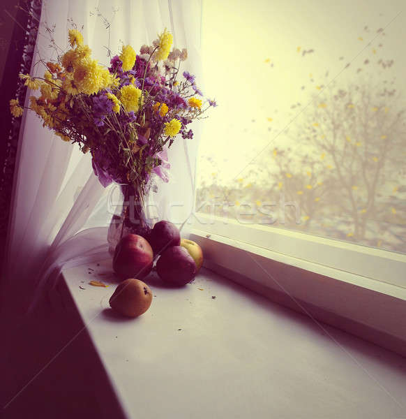autumn Still Life Stock photo © Aliftin