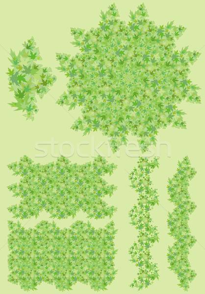 foliage, leaves green background Stock photo © Aliftin