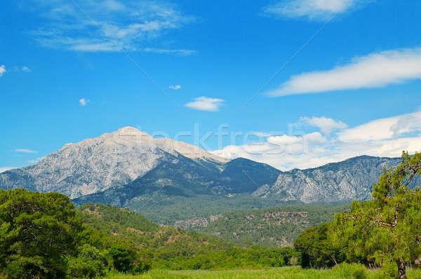 top of mountain Olympos (Turkey) and blue sky Stock photo © alinamd