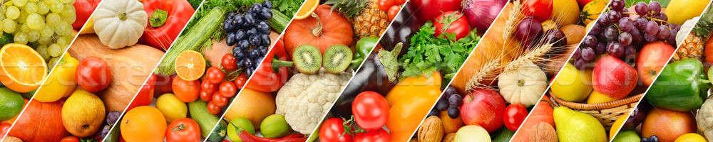 Panoramisch collectie vers vruchten groenten breed Stockfoto © alinamd
