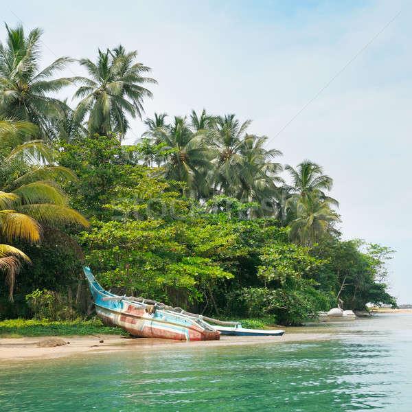 lake, tropical palms and  boat Stock photo © alinamd