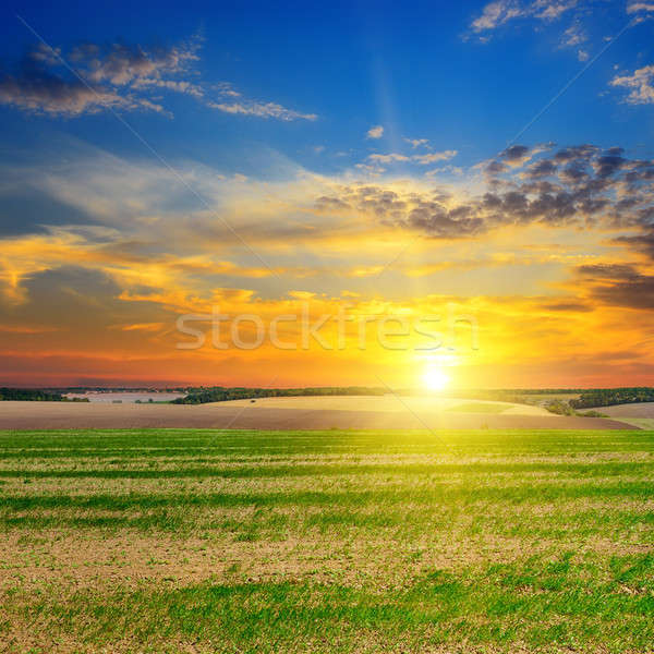 Alan gündoğumu mavi gökyüzü sonbahar akşam gün batımı Stok fotoğraf © alinamd