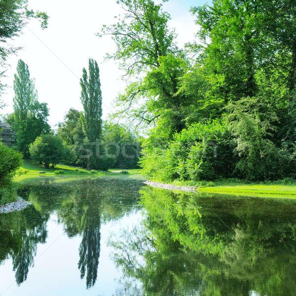 Scenico lago estate parco cielo albero Foto d'archivio © alinamd