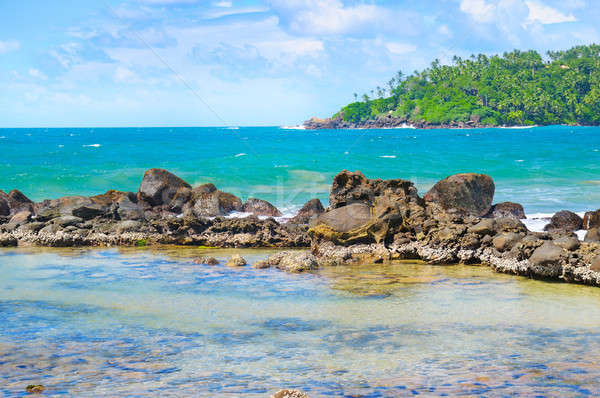 Beach tropical ocean with coral, palms trees and lagoon Stock photo © alinamd