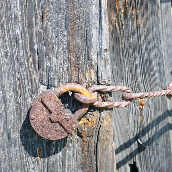 old padlock on the ramshackle doors Stock photo © alinamd