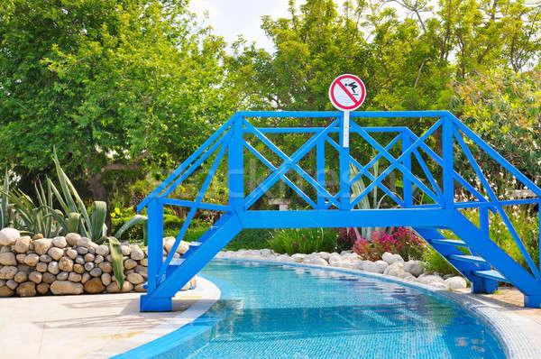 пешеходный мост лет парка бассейна лес пейзаж Сток-фото © alinamd