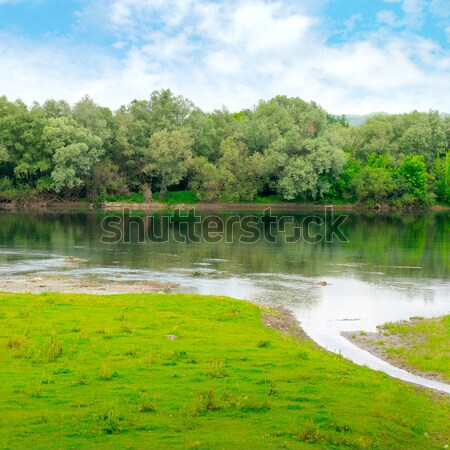 plain river with inflows and floodplain forest Stock photo © alinamd