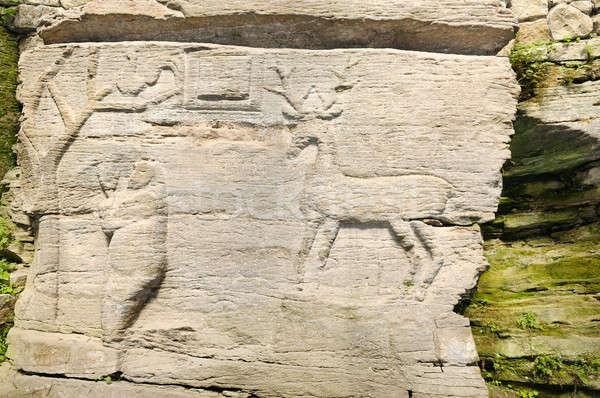 ancient rock paintings Stock photo © alinamd