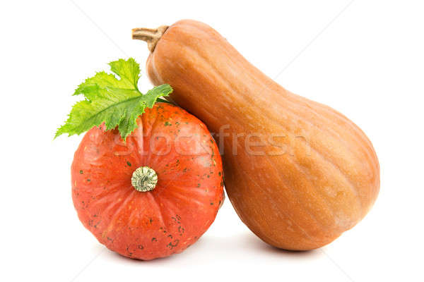 ripe pumpkin isolated on white background Stock photo © alinamd