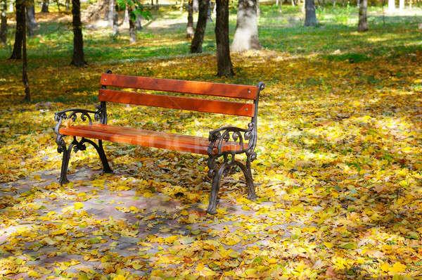 Güzel sonbahar park ahşap turuncu yaprakları Stok fotoğraf © alinamd