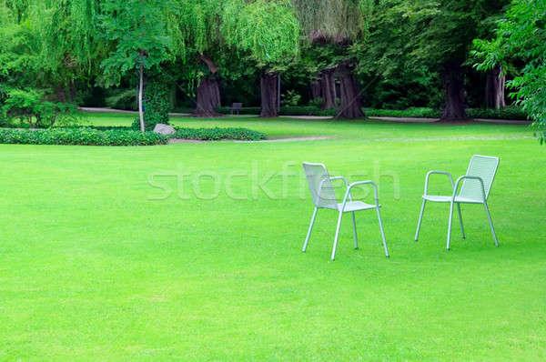 Társalgó székek megnyugtató nyár park virágok Stock fotó © alinamd