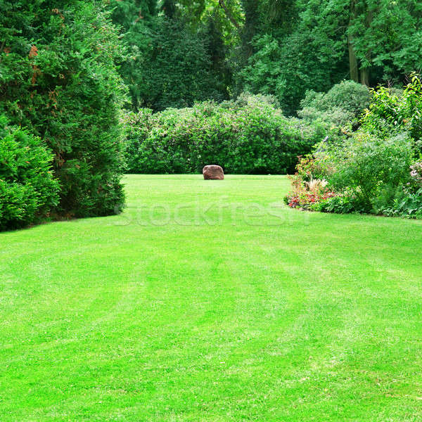beautiful summer garden with large green lawns Stock photo © alinamd
