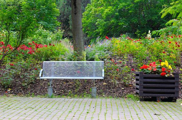 Pad megnyugtató nyár park virágok fa Stock fotó © alinamd