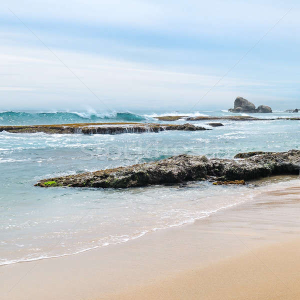 Beautiful coast of the Indian Ocean Stock photo © alinamd