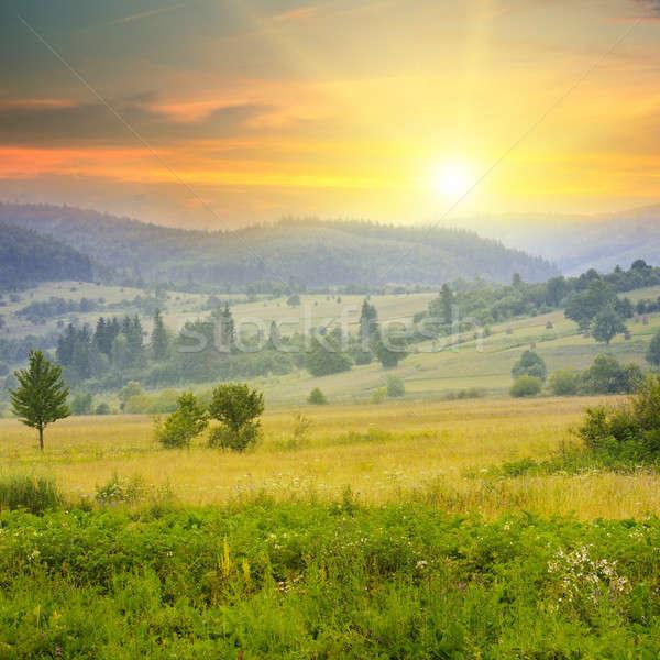 Mooie berg landschap zonsopgang voorjaar bos Stockfoto © alinamd