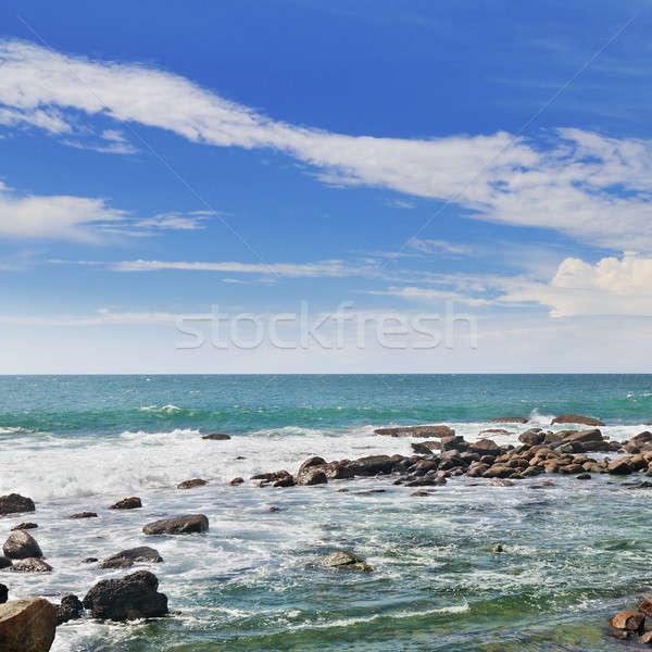 океана коралловый риф берега Blue Sky живописный солнце Сток-фото © alinamd