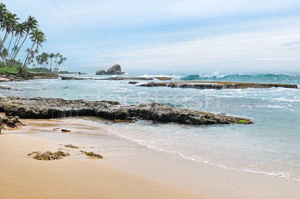 scenic seascape Stock photo © alinamd