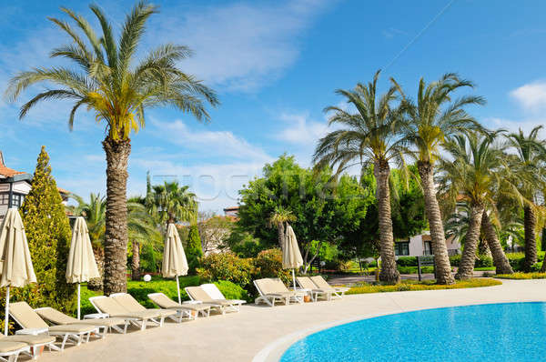 outdoor swimming pool and  palms  Stock photo © alinamd