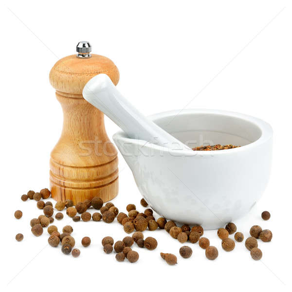 kitchen equipment for grinding spices isolated on a white backgr Stock photo © alinamd