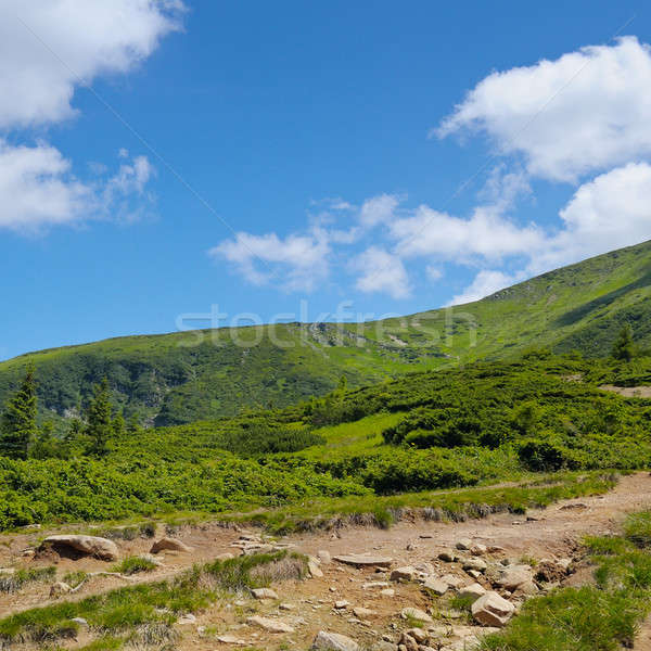 mountain slopes and blue sky Stock photo © alinamd