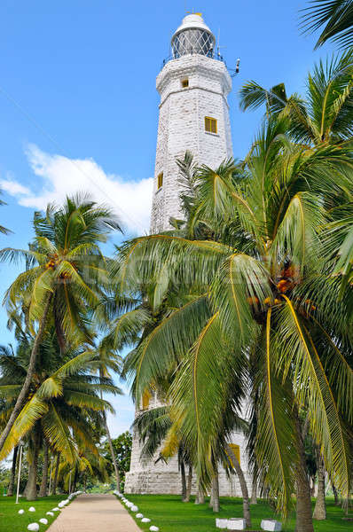 lighthouse and tropical palms, Sri Lanka Matara Stock photo © alinamd