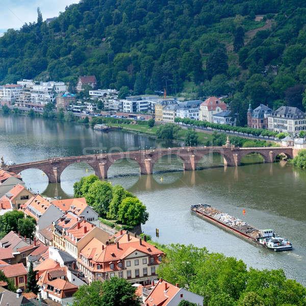 panorama of the city and the bridge Stock photo © alinamd