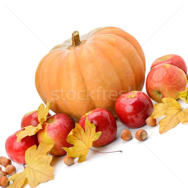Pumpkin, apples and hazel isolated on white Stock photo © alinamd