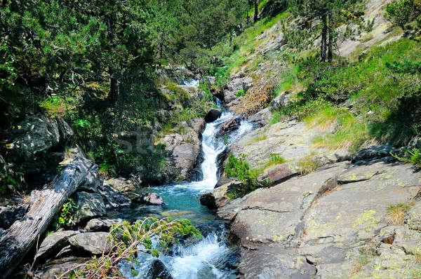 creek with running water in mountain Stock photo © alinamd