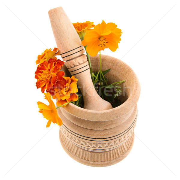 mortar and pestle for grinding herbs Stock photo © alinamd