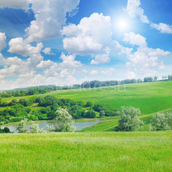 Pintoresco verde campo cielo azul cielo árbol Foto stock © alinamd