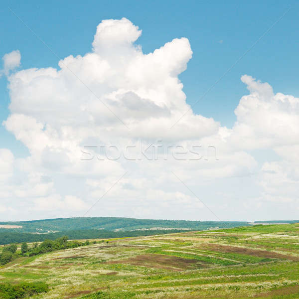 Pittoresque collines ciel bleu printemps herbe nature Photo stock © alinamd