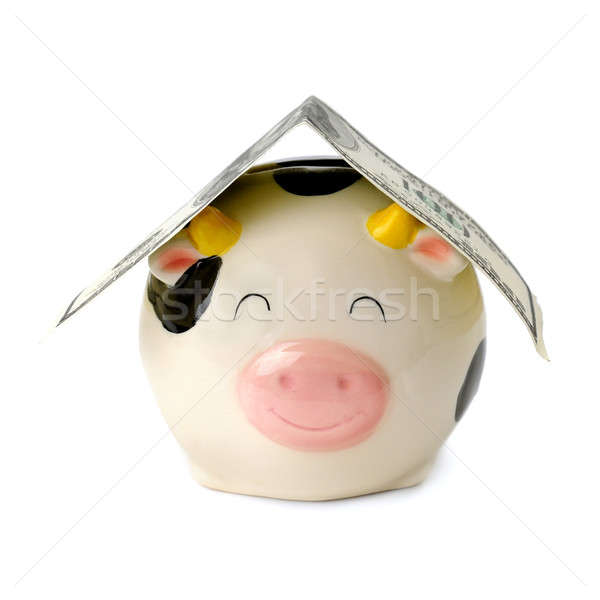 piggy bank with dollars isolated on a white background Stock photo © alinamd
