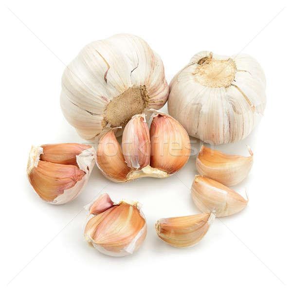 garlic  Stock photo © alinamd