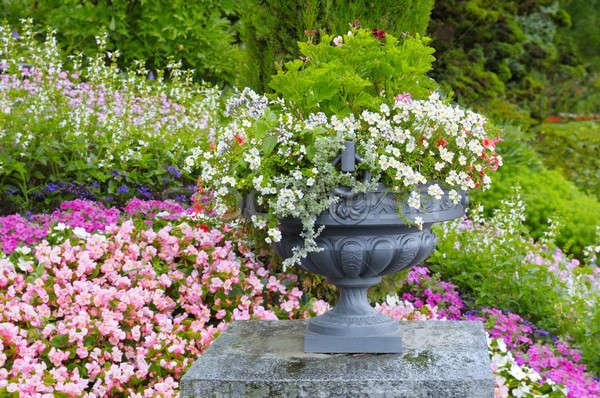 Gyönyörű virágágy kő váza virágok virág Stock fotó © alinamd