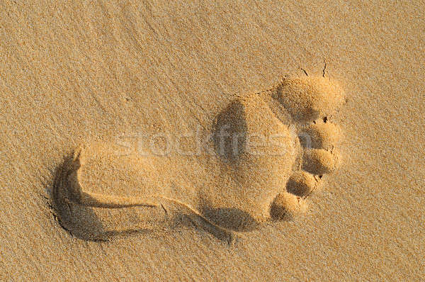 imprint of human feet on sandy beach Stock photo © alinamd