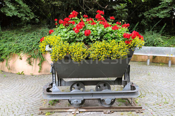 Creative lit de fleurs printemps nature design jardin Photo stock © alinamd