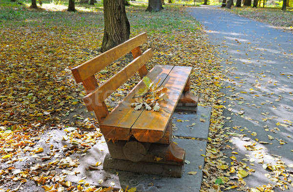 beautiful autumn park with paths and benches Stock photo © alinamd