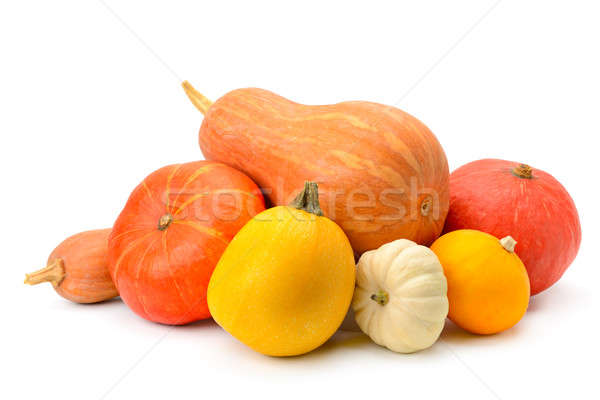 ripe pumpkins isolated on white background Stock photo © alinamd