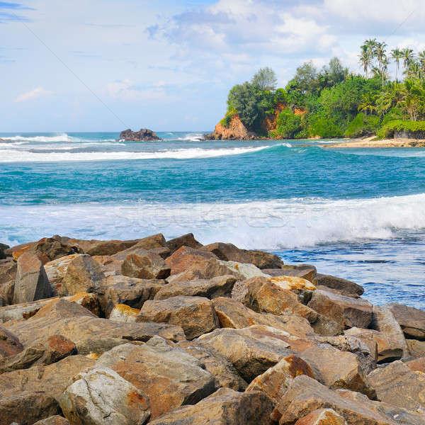 Mooie oceaan bewolkt hemel tropische palmen Stockfoto © alinamd