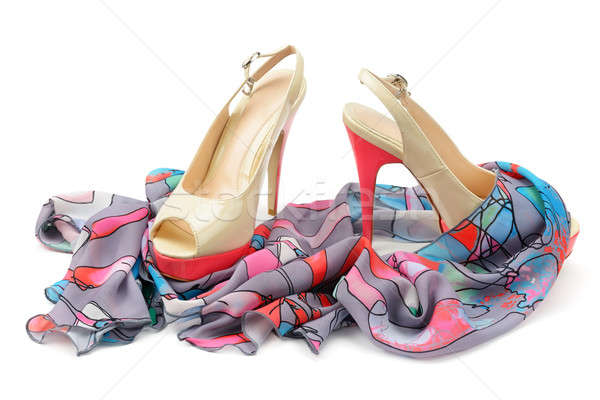 Women's shoes and accessories Stock photo © alinamd