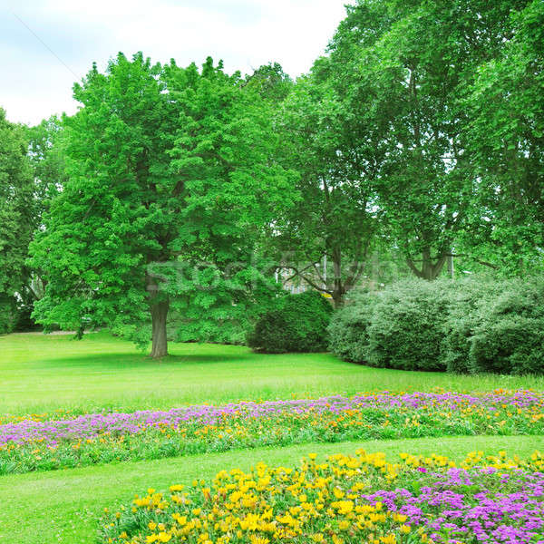 Stock photo: Summer garden with lawn and flower garden